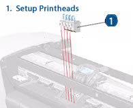 HP Designjet Setup Printheads (Start up Print Heads) - diagram and schematic
