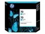 HP 70 Designjet Twin Pack Cyan Ink Cartridge (CB343A)